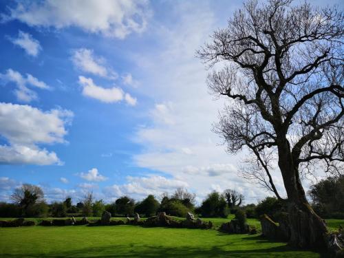 Stone Circle, Grange, near Lough Gur co. Limerick