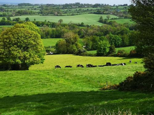 co. Tipperary